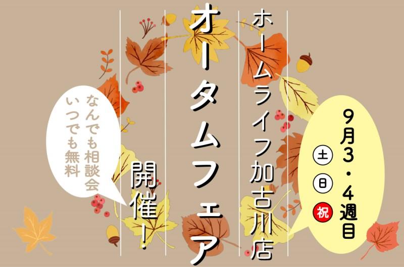【加古川展示場】毎週土日祝開催!9/18(土)~オータムフェア開催!!